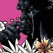 El gorila llorica: Narrativa gráfica, el elefante en la habitación