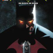 Batman y Robin 6: En busca de Robin